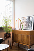 Houseplant on plant stand next to retro wooden sideboard