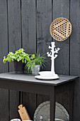 Herbs and candlestick on black table below decorative plate on black-painted wooden wall