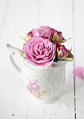 Roses in milk jug