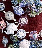 Different teapots between blue hydrangea flowers