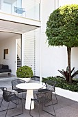 Modern courtyard with a seat and a topiary tree