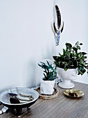 Arrangement with houseplants and ethnic accessories
