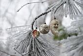 Nostalgischer Christbaumschmuck an einem Zweig mit Frost