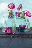 Dahlias in glass bottles