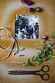 Black-and-white photo in hand-made frame, flowers, vintage scissors and yarn