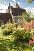 Grasses and shrubs in cottage garden outside old stone house