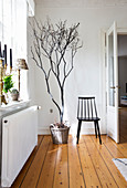 Bare branches arranged in basket next to chair