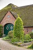 Beet mit Säulen-Hainbuche 'Fastigiata' vor altem Bauernhaus mit Reetdach (Ostfriesland)