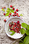 Freshly picked redcurrants, raspberries and raspberry leaves