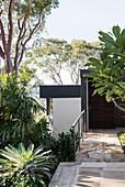 Eingangsbereich umgeben von tropischen Bäumen und Pflanzen