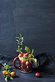 Fruit and twigs in red mug against dark blue background