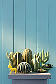 Collection of ceramic cacti in front of blue board wall
