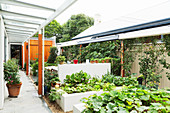 Raised beds in the elongated courtyard garden with sun sails
