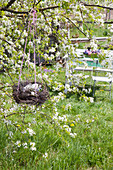 Flowers in nest made from birch branches hung from apple tree
