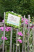 Sign framed in green physalis husks on garden fence