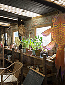 Potted plants on shelves and fish flag in vintage shed