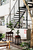Bonsai trees on stools and benches in courtyard garden
