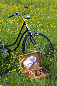 Bicycle and open picnic basket in flowering meadow