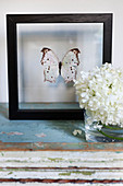 Mounted butterfly in black frame