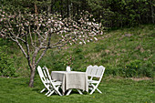 Garden table and white chairs below flowering fruit tree