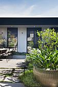 Sommerlicher Garten mit Terrasse vor modernem Bungalow