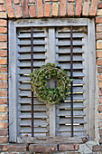Wreath of ivy leaves and ivy flowers on old shutters