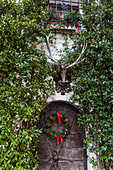 Lushly overgrown exterior wall decorated with antlers and wreath on door