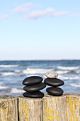 Black pebbles and on pale pebble on wooden stakes on sea shore