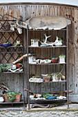 Potted plants and finds on vintage metal shelves