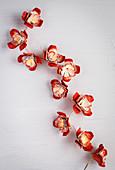 Lichterkette mit gebastelten Blumen aus Eierkarton
