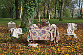 Table decorated for autumn and two chairs in garden