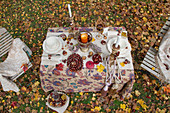 Herbstlich dekorierter Tisch mit zwei Stühlen im Garten