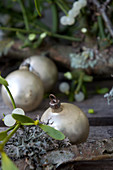Vintage Christmas-tree baubles amongst mistletoe and lichen