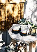 Becher und Topfpflanzen auf Holzhocker