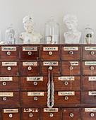 Glashauben und Büsten aus Gips auf antikem Apothekerschrank