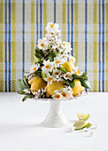 Table centrepiece of narcissus, lemons and limes