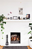 Fireplace with fireplace dishes, house plants, photos, camera and decorative objects on mantelpiece