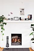 Kamin mit Kamingeschirr, Zimmerpflanze, Fotos, Fotoapparat und Dekoobjekte auf Kaminsim