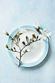 White-flowering sprig of magnolia on plate
