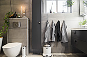 Bathroom with grey wall tiles, toilet and washstand