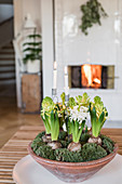 Bowl of moss, white hyacinths and candles in living room