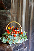 Basket of rose hips and ivy