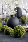DIY-Mooskugeln auf gedecktem Tisch mit schwarzer Tischdecke