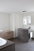 Stone washstand and toilet hidden in cabinet in purist bathroom