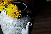 Yellow flowers in metal kettle