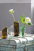Vases made from cut-off wine bottles on top of old trunk