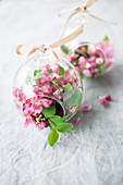 Crab apple blossom in glass baubles to be hung from ribbons