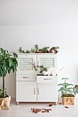 Katze in der Schublade eines weißen Küchenbuffets mit Naturdeko