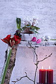 Wintry arrangement of flowers, birch branch and candles