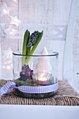 Advent arrangement of hyacinth, tealight and Christmas tree ornament arranged in glass vase